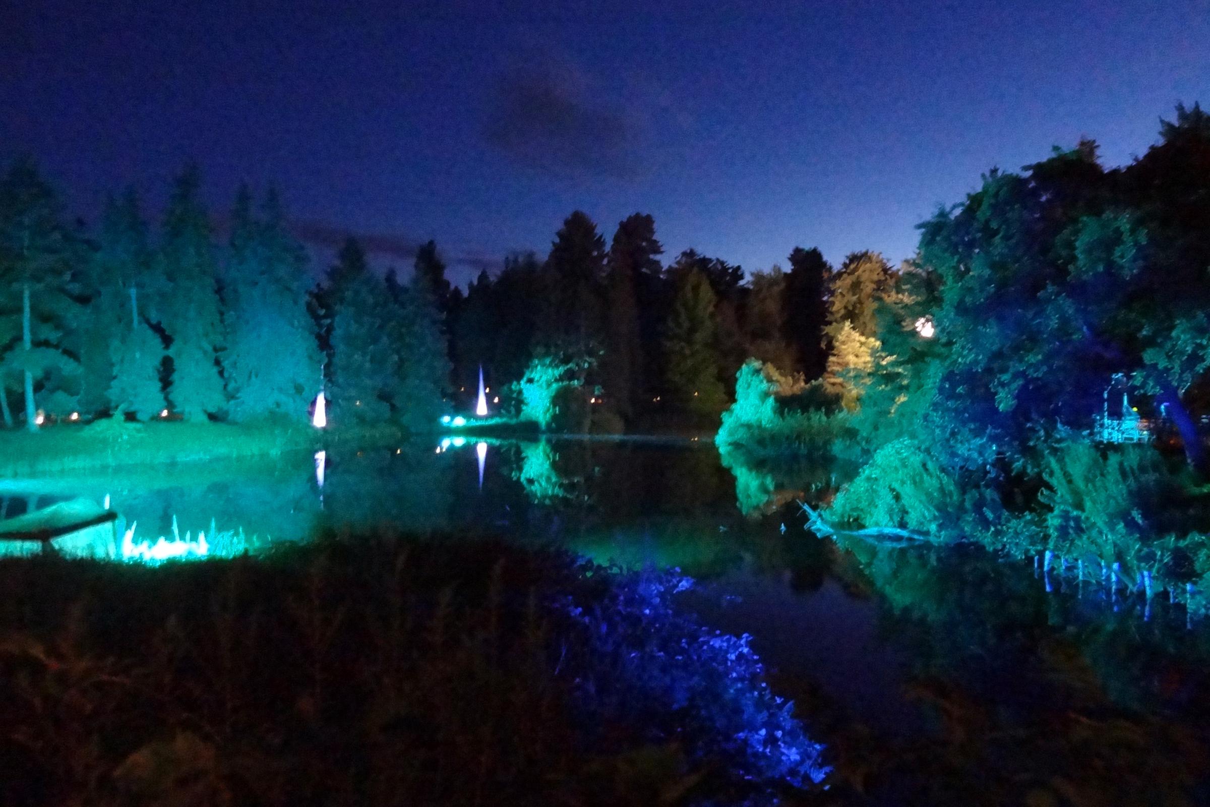 Botanische Nacht. Foto: Ulrich Horb